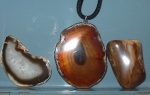 Polished agate slices & petwood