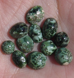 MICHIGAN GREENSTONE or CHLORASTROLITE