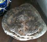 Petoskey Stone otherside